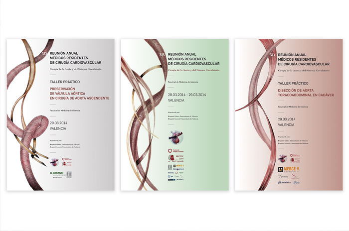 graphic communication of the nineteenth annual meeting of medical residents in cardiovascular surgery held in valencia